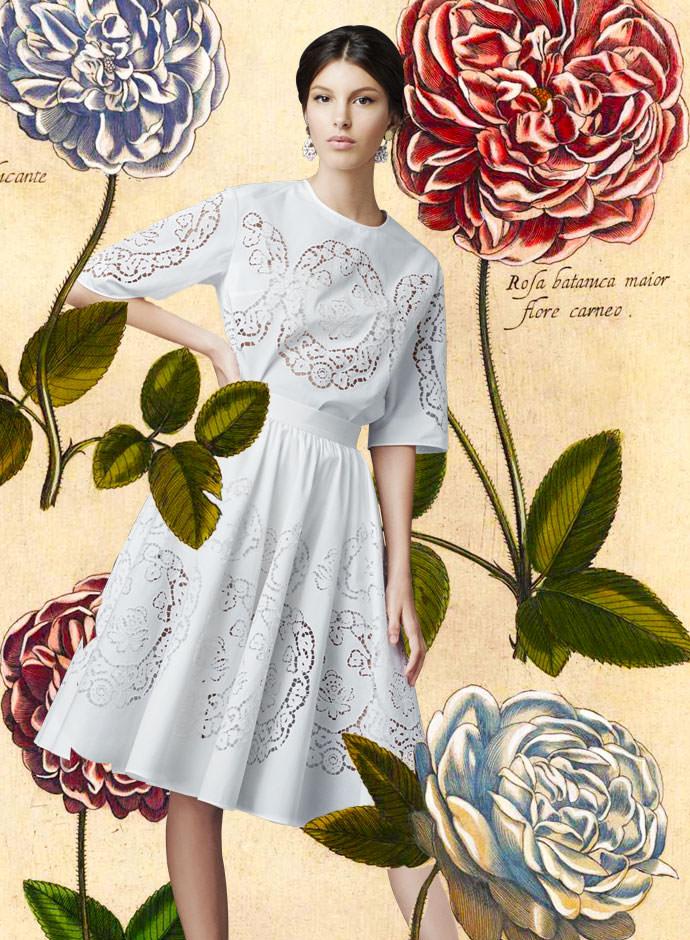 Очаровательная коллекция! Уроки ботаники от Dolce & Gabbana